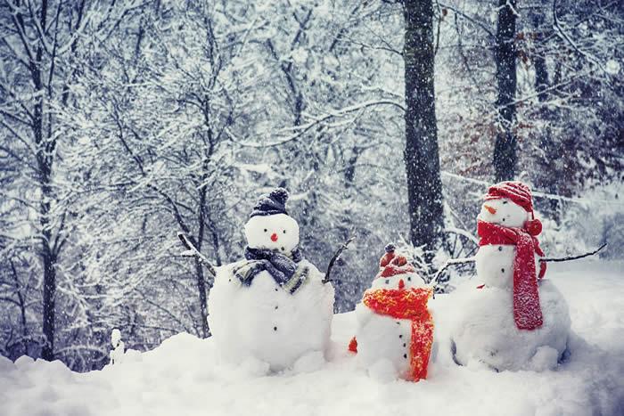 Christmas Security with ARM Locksmiths of Hailsham